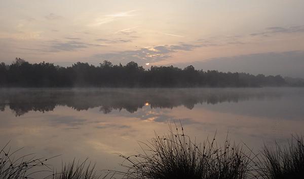 Heidemeer