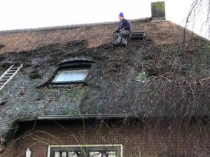 Noorder Poort, opschonen rieten dak